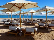 Sunbeds and sunshades on the beach Stock Image