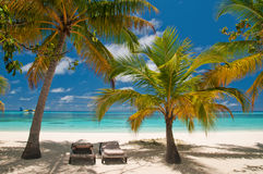 Sunbeds on a tropical beach Stock Image