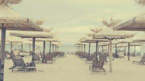 Sunbeds and umbrellas next to the beach. Beautiful panorama stock video footage