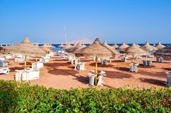Sunbeds and umbrellas on Sharm el Sheikh beach, Egypt royalty free stock photography