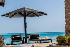 Sunbeds under parasol on the beach of the Red Sea royalty free stock photo