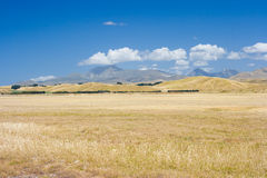 Sunburned valley. Valley with dry grass in Marlborough, New Zealand royalty free stock photography