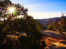 Sunburst över kanjonen arkivbilder