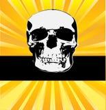 sunburst черепа Стоковые Изображения