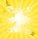 Sunburst. With flower summer illustration background Stock Image