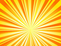 Sunburst. Sunrise in print brocure vector illustration