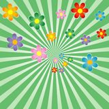 Sunburst background with flowers Royalty Free Stock Photo