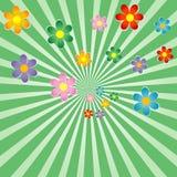 Sunburst background with flowers Royalty Free Stock Photo