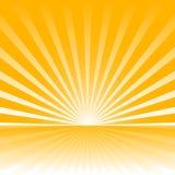 Sunburst background vector Royalty Free Stock Photos