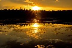 Sunburst dourado sobre as árvores no por do sol imagem de stock