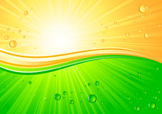 Sunburst with drops Royalty Free Stock Images
