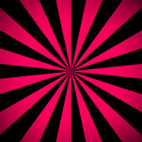 Sunburst Pink and black Pattern. Stock Images