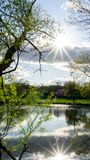Sunburst On The Pond. Catching two star bursts just before the sun starts to set at the pond grass sunny landscape season nature water leaf summer tree blue stock photo