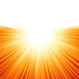 Sunburst rays of sunlight tenplate. EPS 8 Royalty Free Stock Images