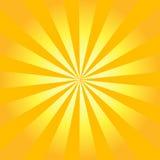 sunburst retro wektor Zdjęcie Royalty Free