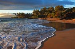 Sunburst tropical da praia, Maui Imagens de Stock