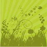 sunbursts зеленого цвета травы иллюстрация штока