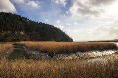 Suncheon wetlands Stock Photo