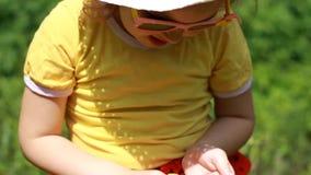 Suncream kräm Sunprotection kräm Barn som suddar hans solbränna för fase- och kroppsolkräm Closeupen behandla som ett barn flicka stock video