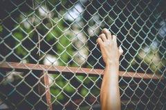 Sund övning för utomhus- övningsman, slå som kör, walki royaltyfri fotografi