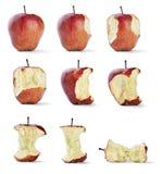 Sund Apple tuggafrukt bantar mat Arkivbild