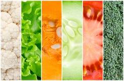 Sund bakgrund för nya grönsaker royaltyfri foto