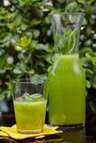 Sund drink Royaltyfria Foton