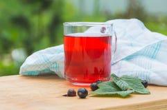 Sund dryck från bären av den svarta vinbäret Royaltyfria Foton