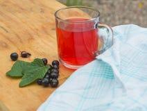 Sund dryck från bären av vinbäret Royaltyfri Foto