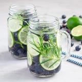 Sund förkylning ingett vatten med det nya blåbäret, limefrukt och rosmarin, fyrkant royaltyfria bilder