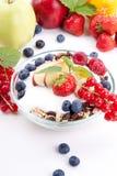 Sund frukost med flakesfrukter   fotografering för bildbyråer