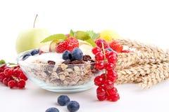 Sund frukost med flakesfrukter   arkivfoton