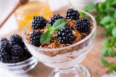 Sund frukost med hemlagad granola och nya bär, yoghurt med mysli och björnbär royaltyfria bilder