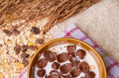 Sund frukost med sädesslag. Royaltyfri Fotografi