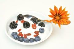 Sund frukost med yoghurt, blåbäret och björnbäret royaltyfria bilder