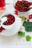 Sund frukost: mysli med yoghurt och nya bär i en bunke och en fruktsaft Arkivbild