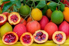 Sund frukt för Gac frukt Royaltyfria Bilder