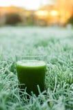 Sund grön detoxfruktsaft fotografering för bildbyråer