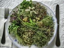 Sund groddsallad, toppen mat fotografering för bildbyråer