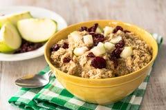 Sund havremjöl för frukost med äpplen och tranbär Arkivbild