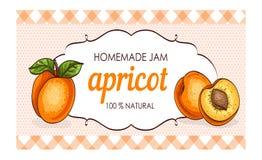 Sund hemlagad illustration för vektor för etikett för papper för aprikosdriftstoppmarmelad Royaltyfria Bilder