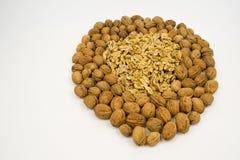 Sund hjärta som göras från isolerade näringsrika valnötter på en vit royaltyfri fotografi