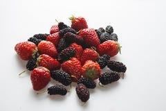 Sund jordgubbe och björnbär på den vita bakgrunden Fotografering för Bildbyråer