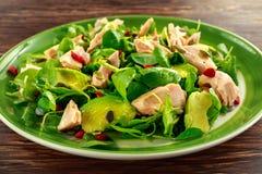 Sund lax-, avokadosallad med källkrasse och gojibär, pumpa kärnar ur blandningen på den gröna plattan Royaltyfri Fotografi