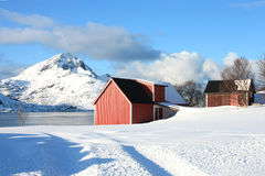 Sund in Lofoten's barn Royalty Free Stock Images