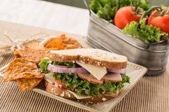 Sund lunch Ham Turkey Swiss Cheese Sandwich med chiper Royaltyfria Foton