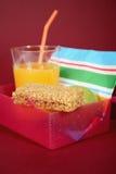 sund lunchbox royaltyfri foto