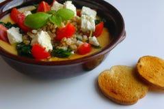 Sund målbunke av mosade ost och tomater för feta för spenat för fågelungeärtor knappt Arkivfoton