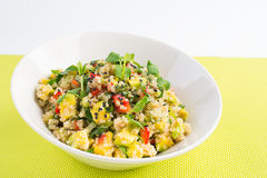 Sund mat för strikt vegetarian Arkivfoto