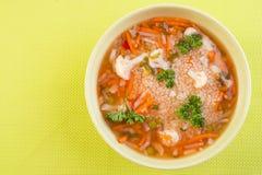 Sund mat för strikt vegetarian Royaltyfri Foto